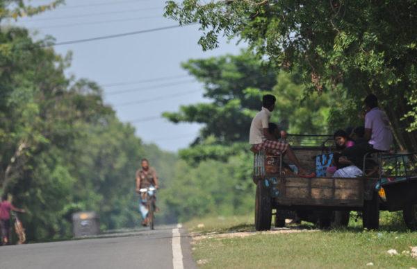 udawalawe-village