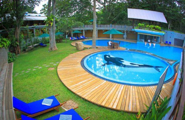 udawalawe_safari_pool