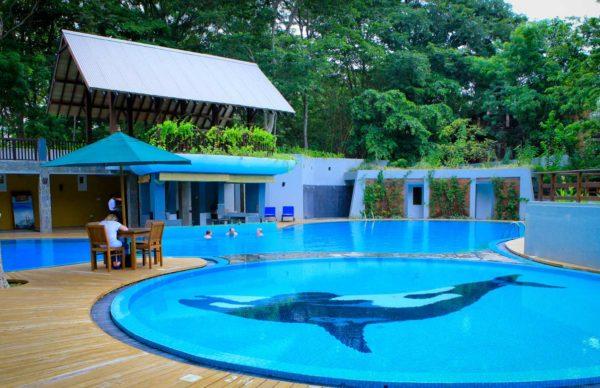 Grand udawalawe safari resort Pool